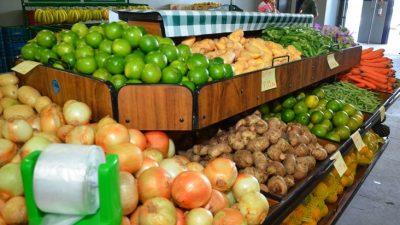 Prefeitura confirma apoio aos agricultores familiares e as atividades da Coophomar