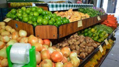 Convênios com governo do Estado beneficiam produção agrícola