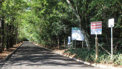 Prefeitura analisa revitalização do Bosque Municipal para 2018