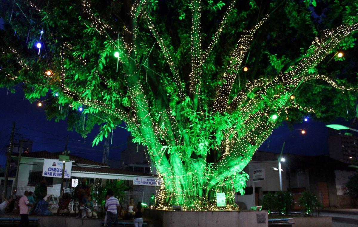 Natal Iluminado será aberto oficialmente nesta quarta-feira