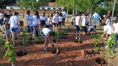 Prefeitura faz parceria com Santa Casa para reurbanização da praça da Radial Leste-Sul